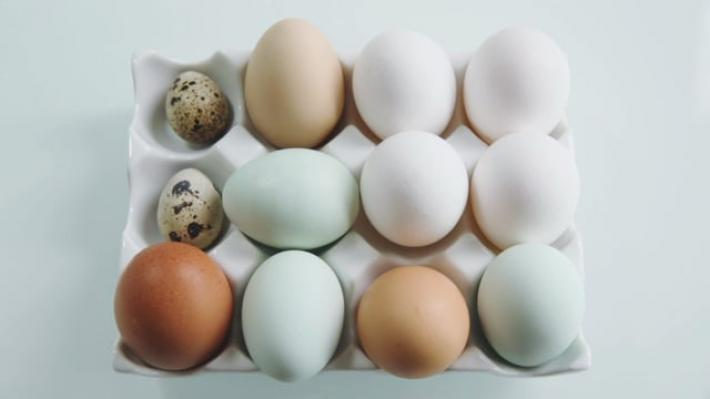 A picture of Delia's Second Term - Lesson 1 - Soft and Hard Boiled Eggs cookery school video