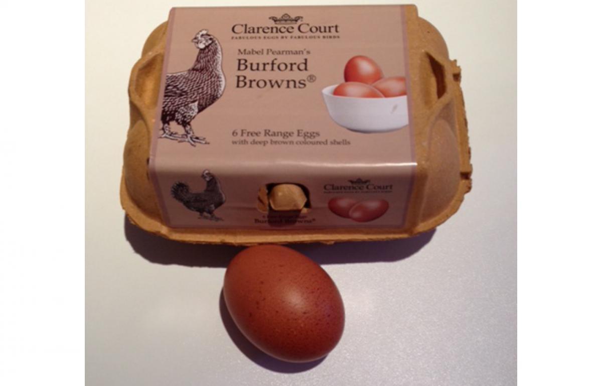 Burford browns 3x2