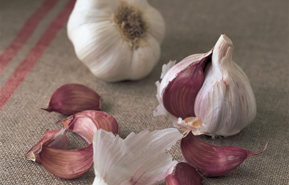 Ingredient fish garlic 0