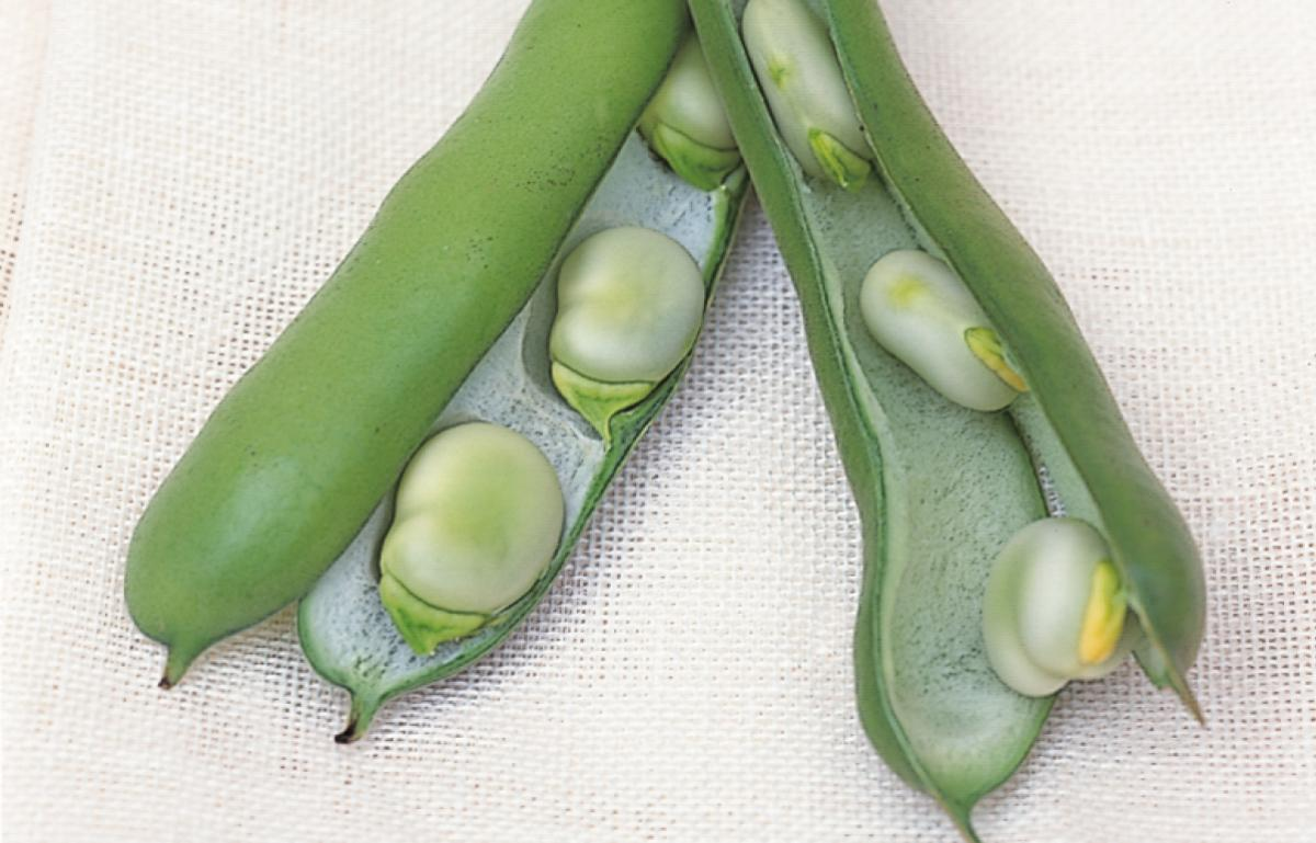 Broadbean Pricing, Features, Reviews & Comparison of ...