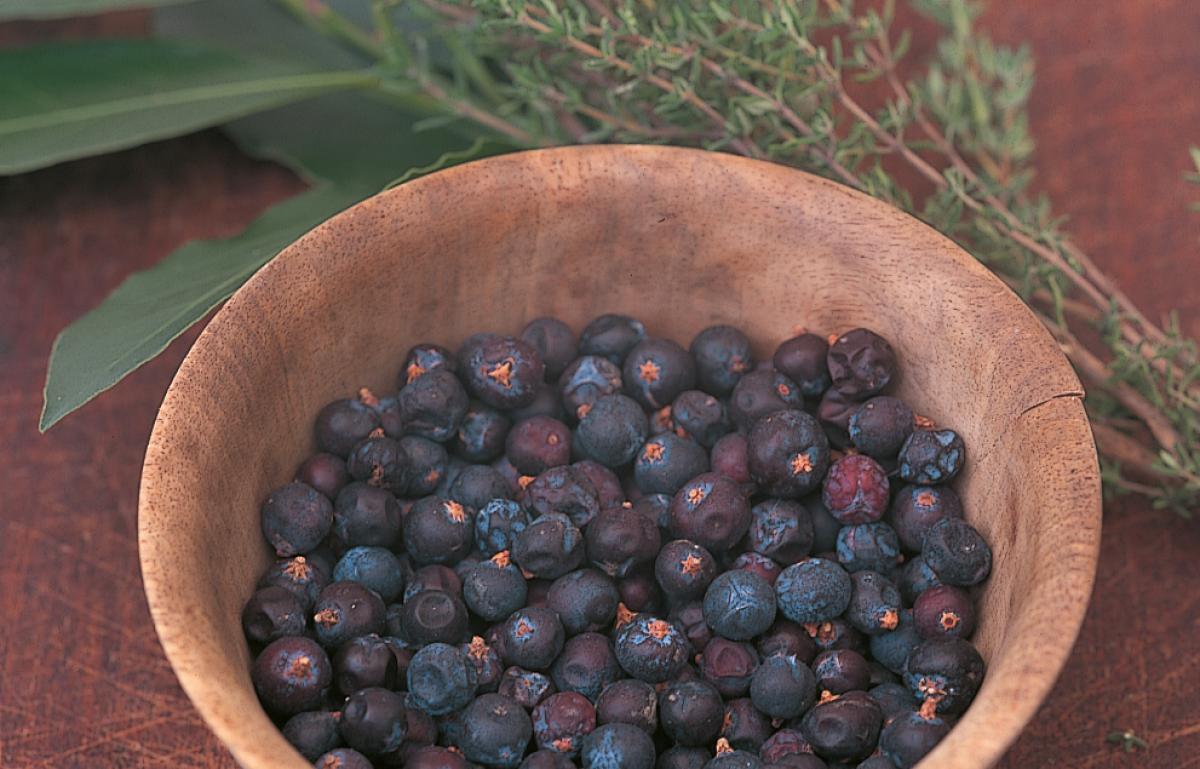 Ingredient htc juniper