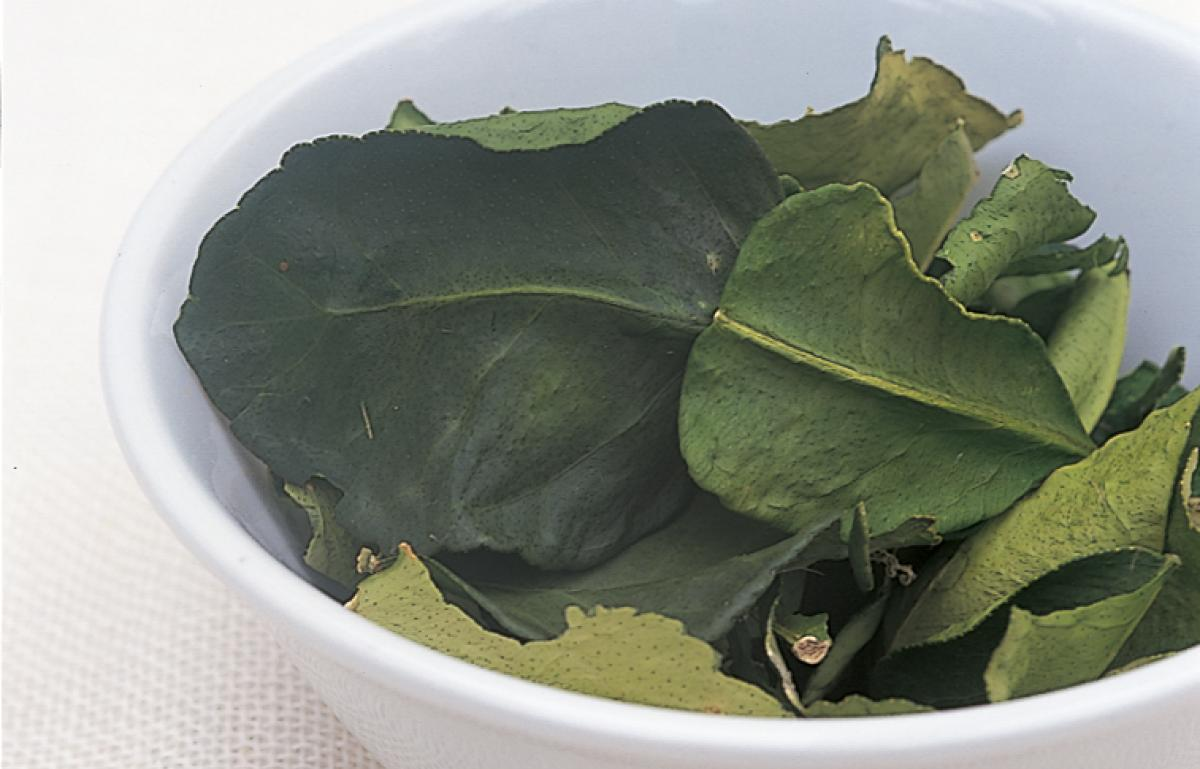 Ingredient htc kaffir lime leaves