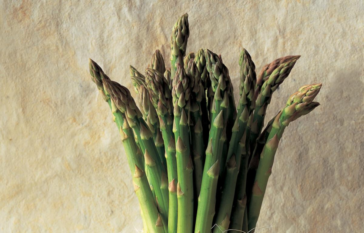 Ingredient soup asparagus