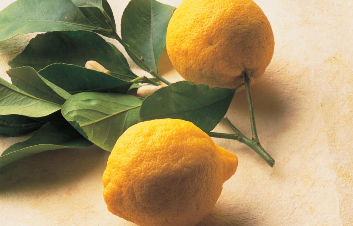 Ingredient soup lemons tif