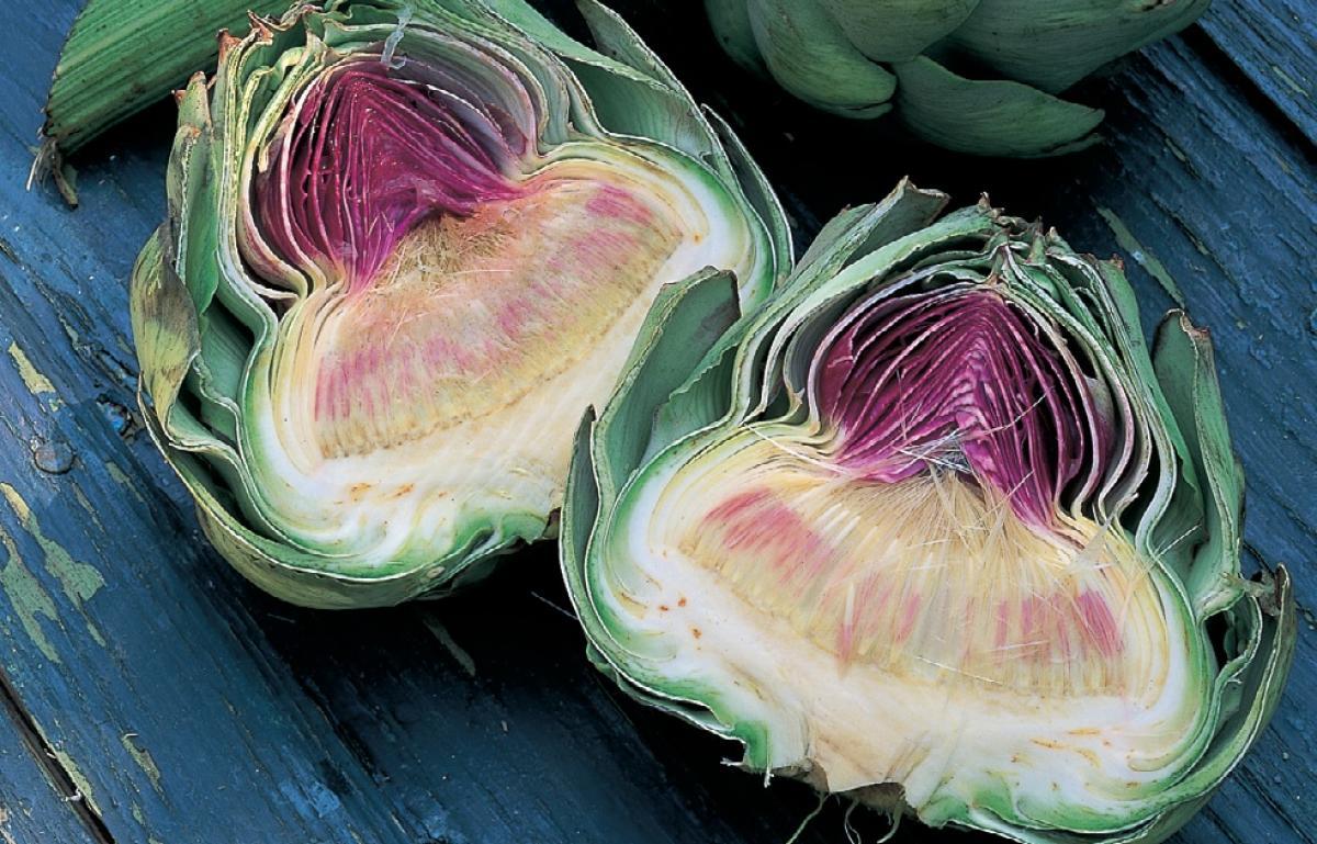 Ingredient vegetarian artichoke