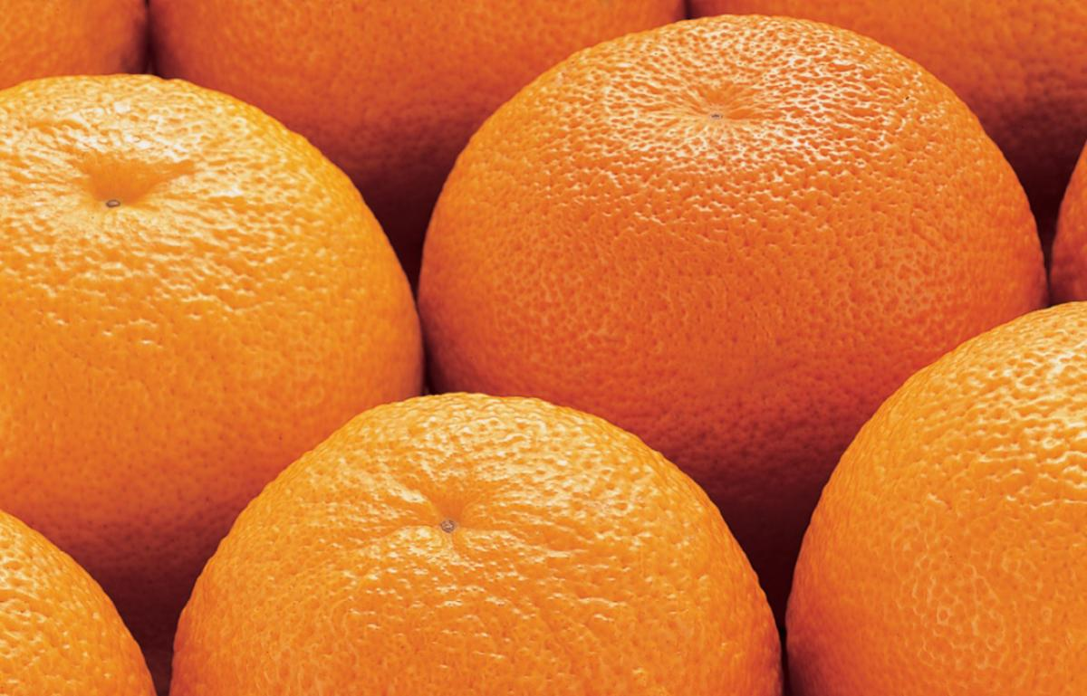Ingredient vegetarian oranges