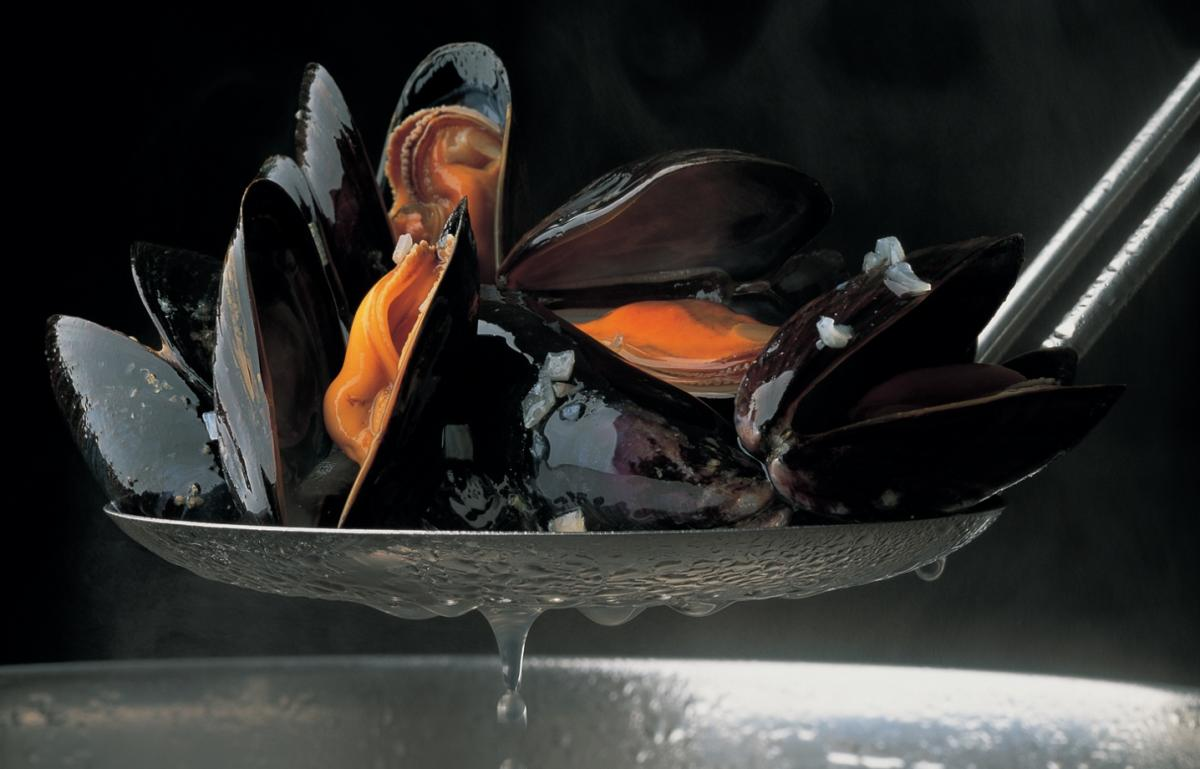 A picture of Delia's Mussel and Saffron Soup recipe