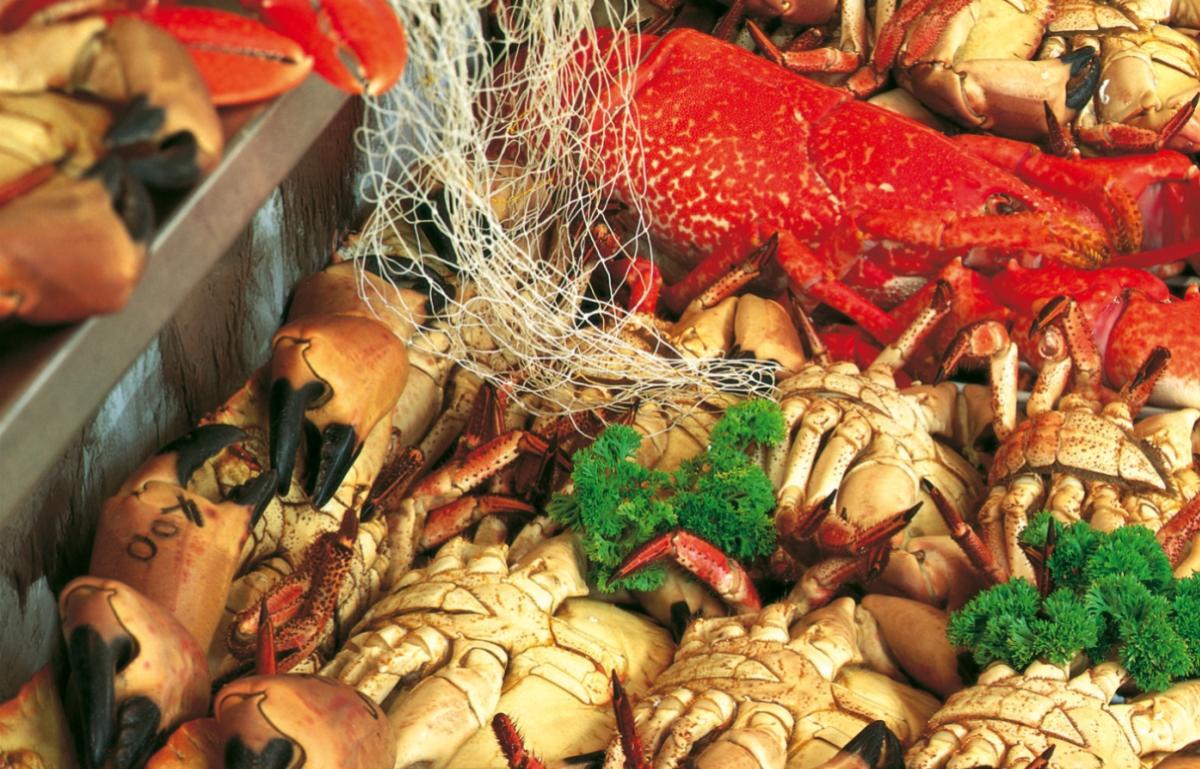 Summer fresh crab salad in vinaigrette