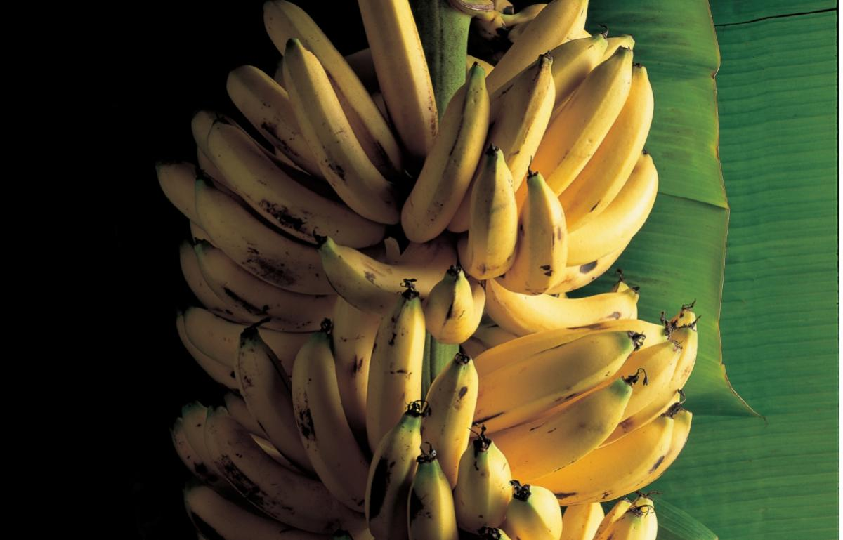 Caribbean Bananas Baked In Rum Served With Rum Syllabub Recipes Delia Online
