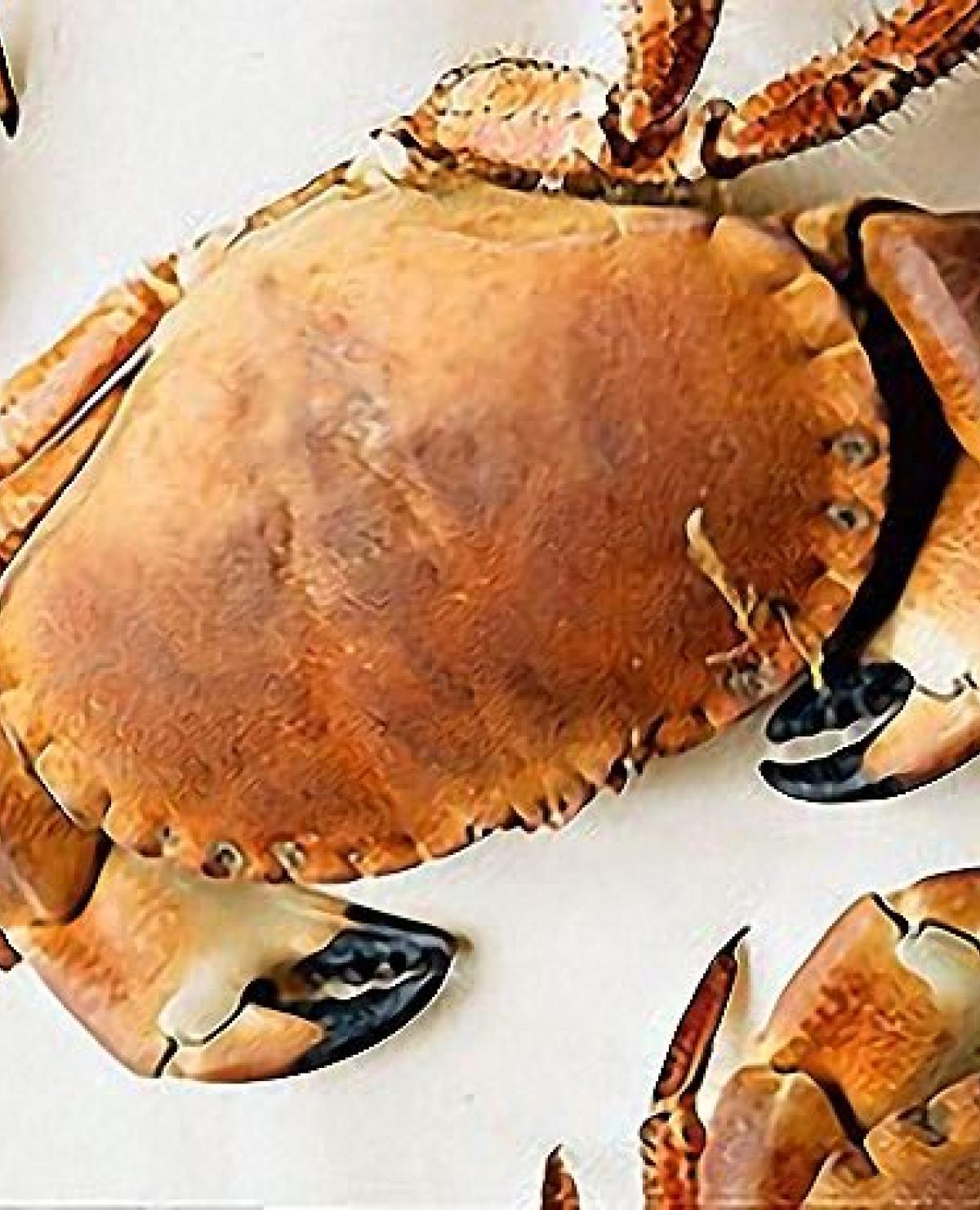 A picture of Delia's Crab recipes