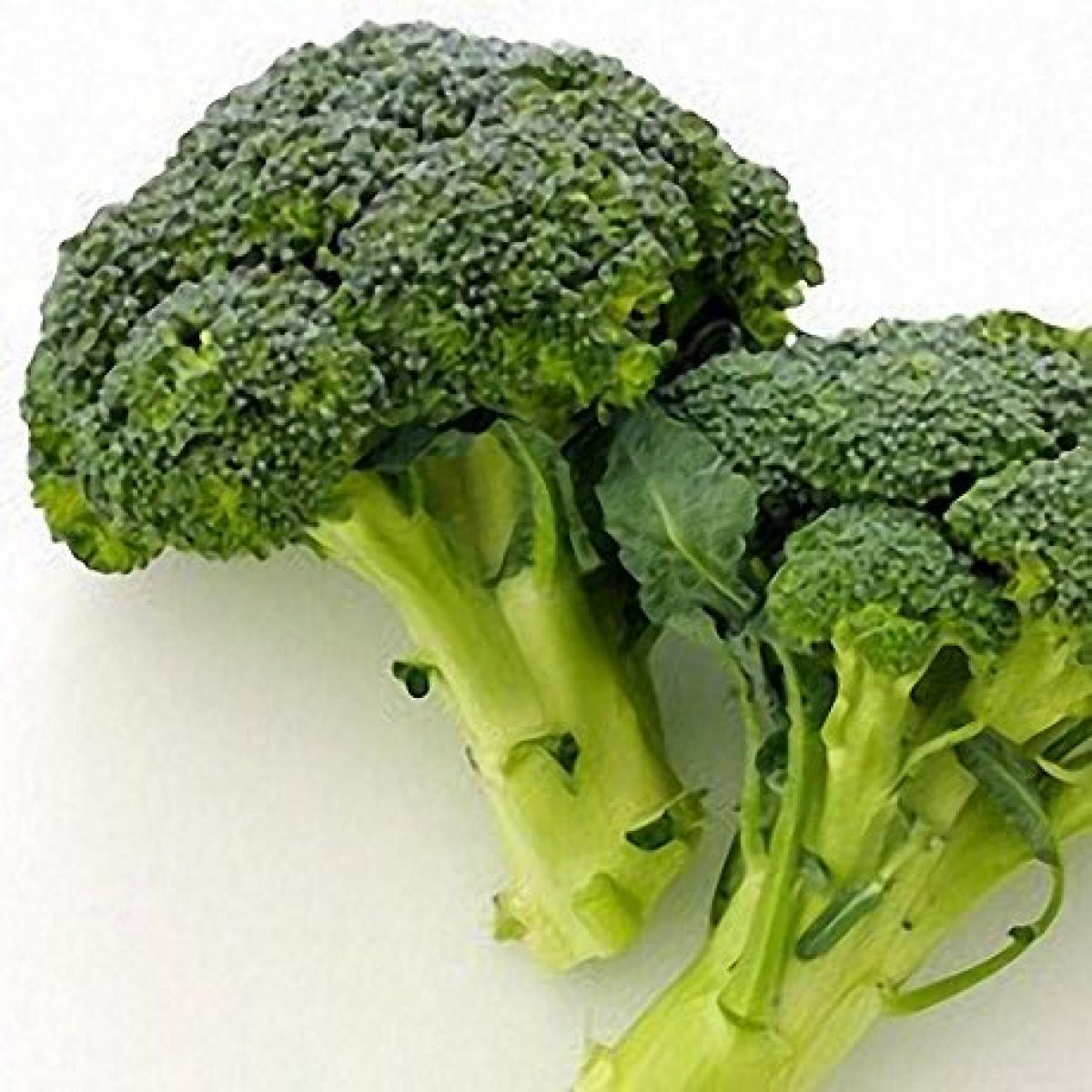 Broccoli 19405