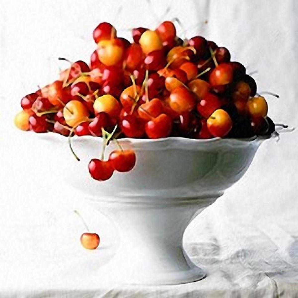 Cherries 19422