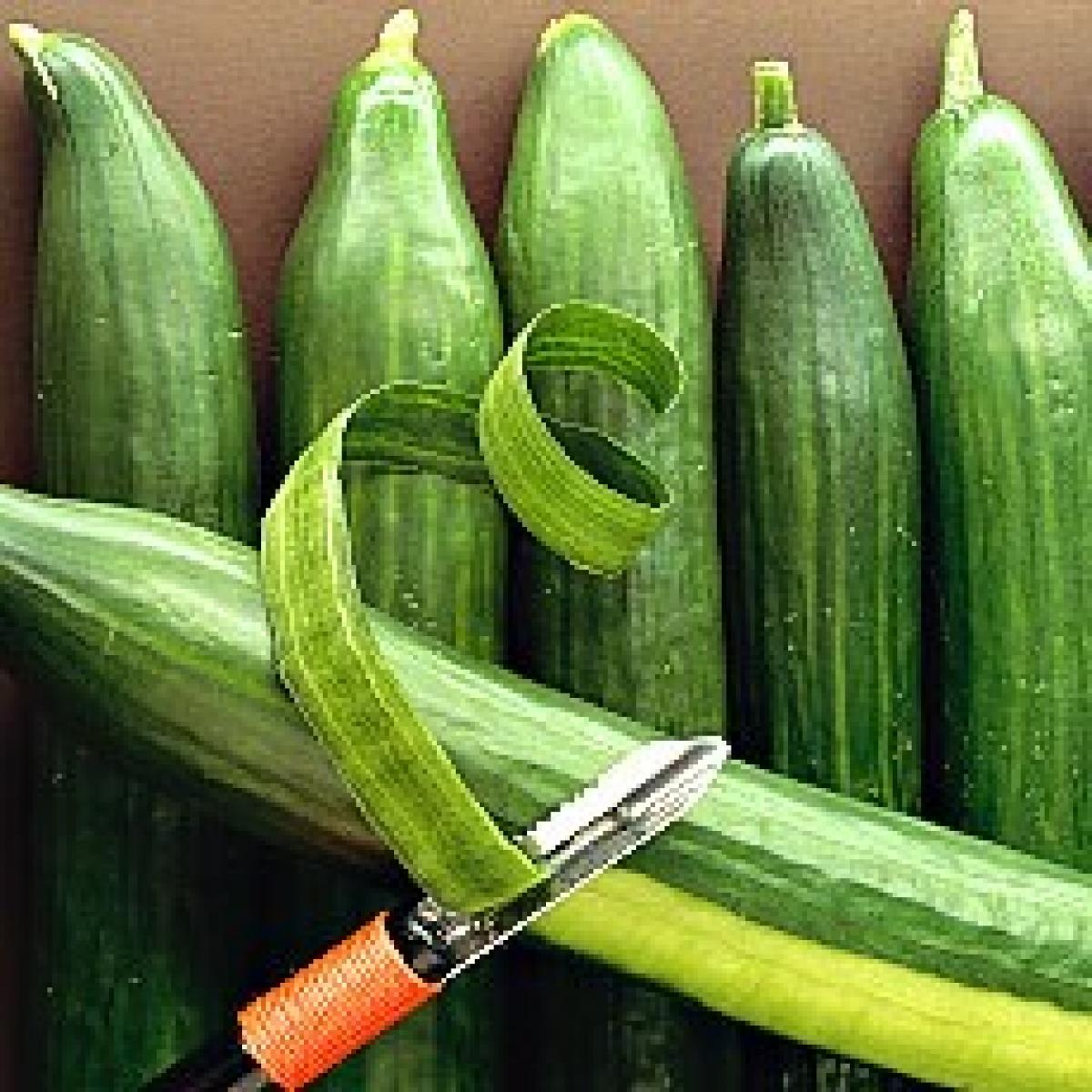 A picture of Delia's Marinated Cucumber and Sesame Salad recipe
