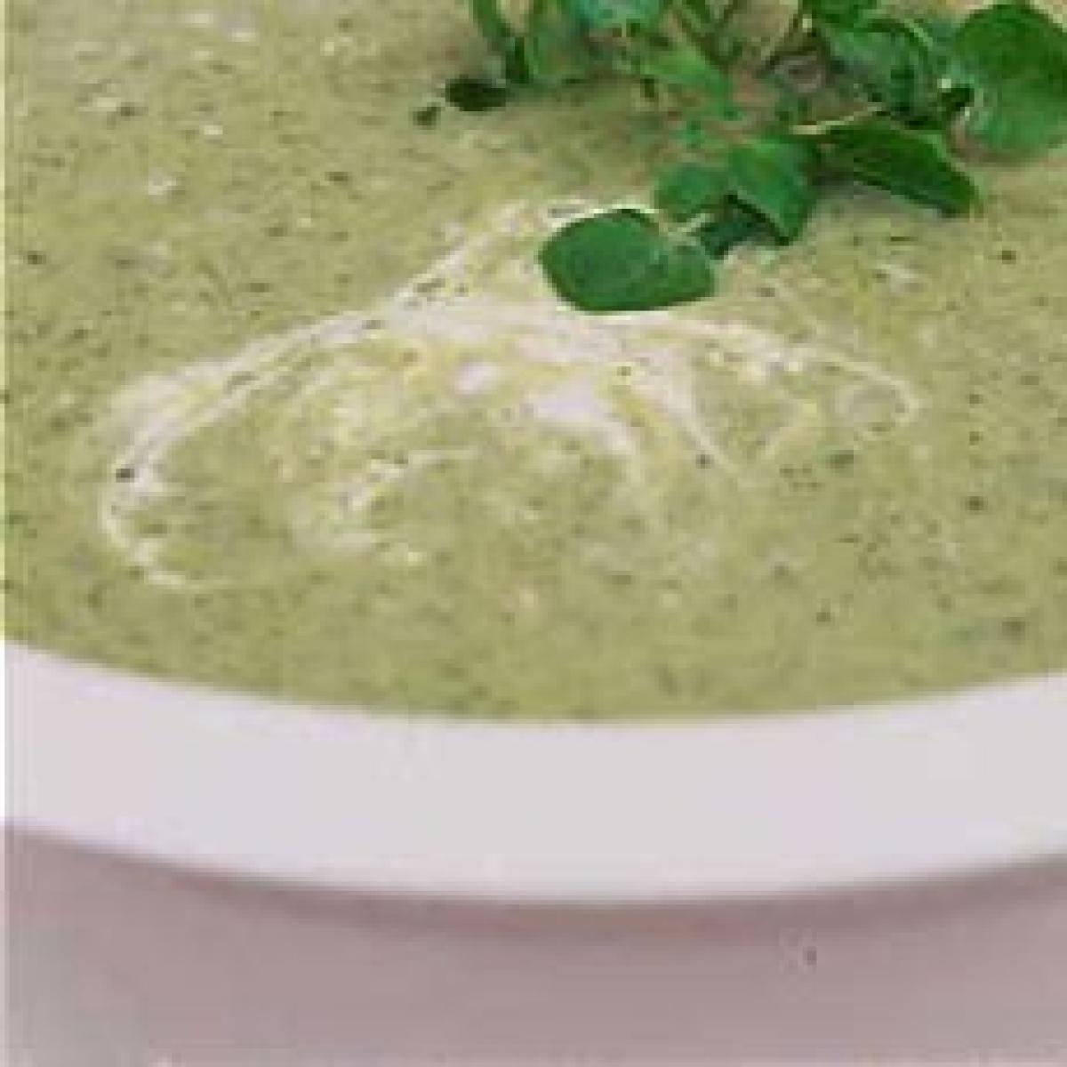 Herb soup 24798