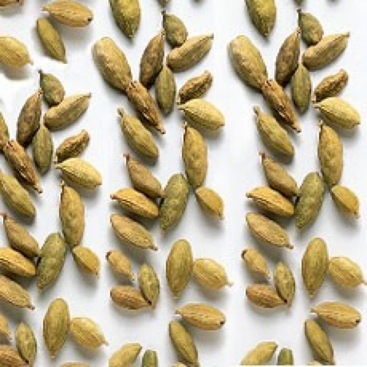 Ingredient cardamom pods old image keep