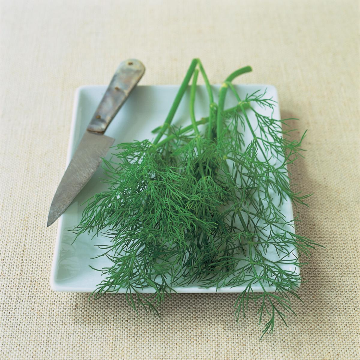 Ingredient fish dill