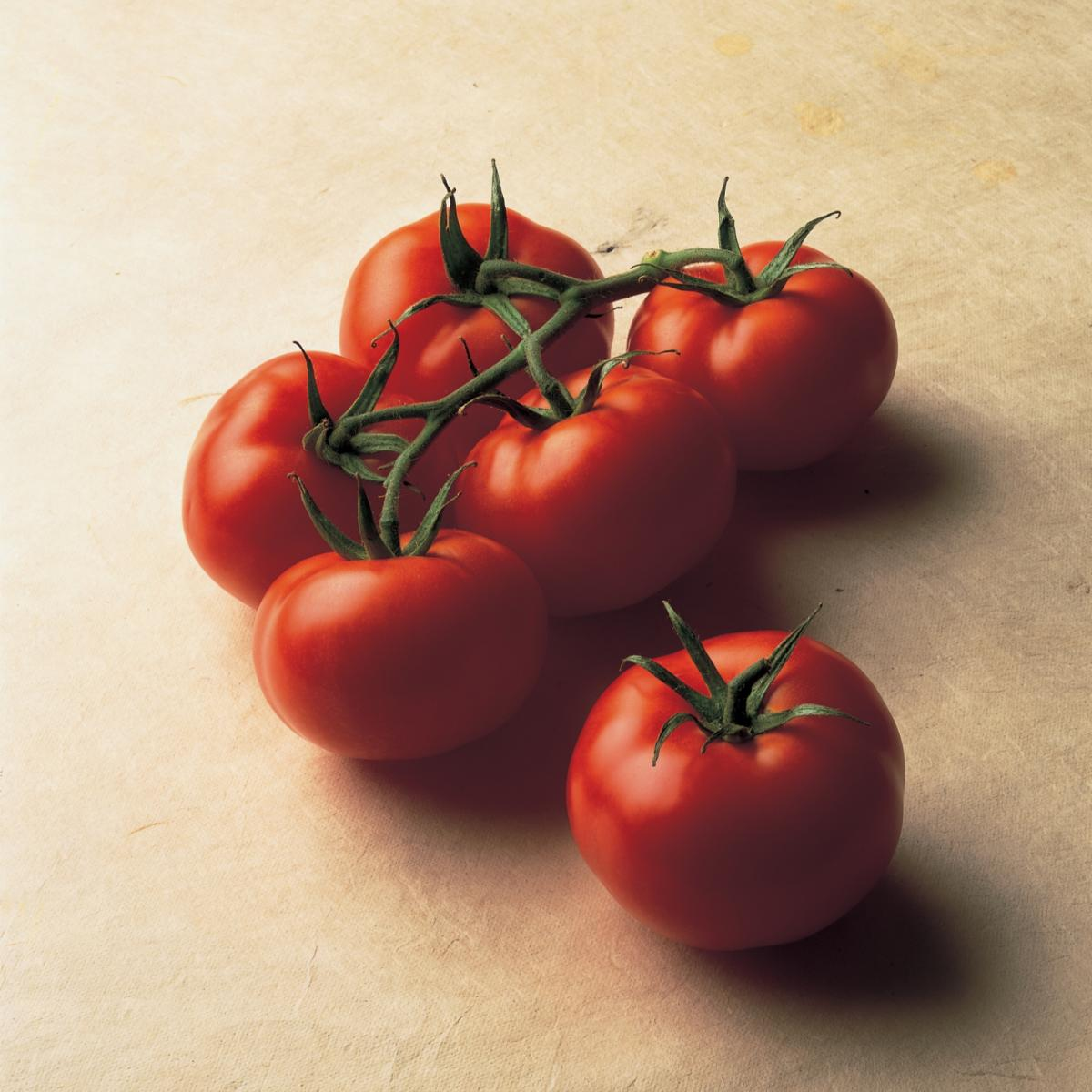 A picture of Delia's Turkish Stuffed Tomatoes recipe