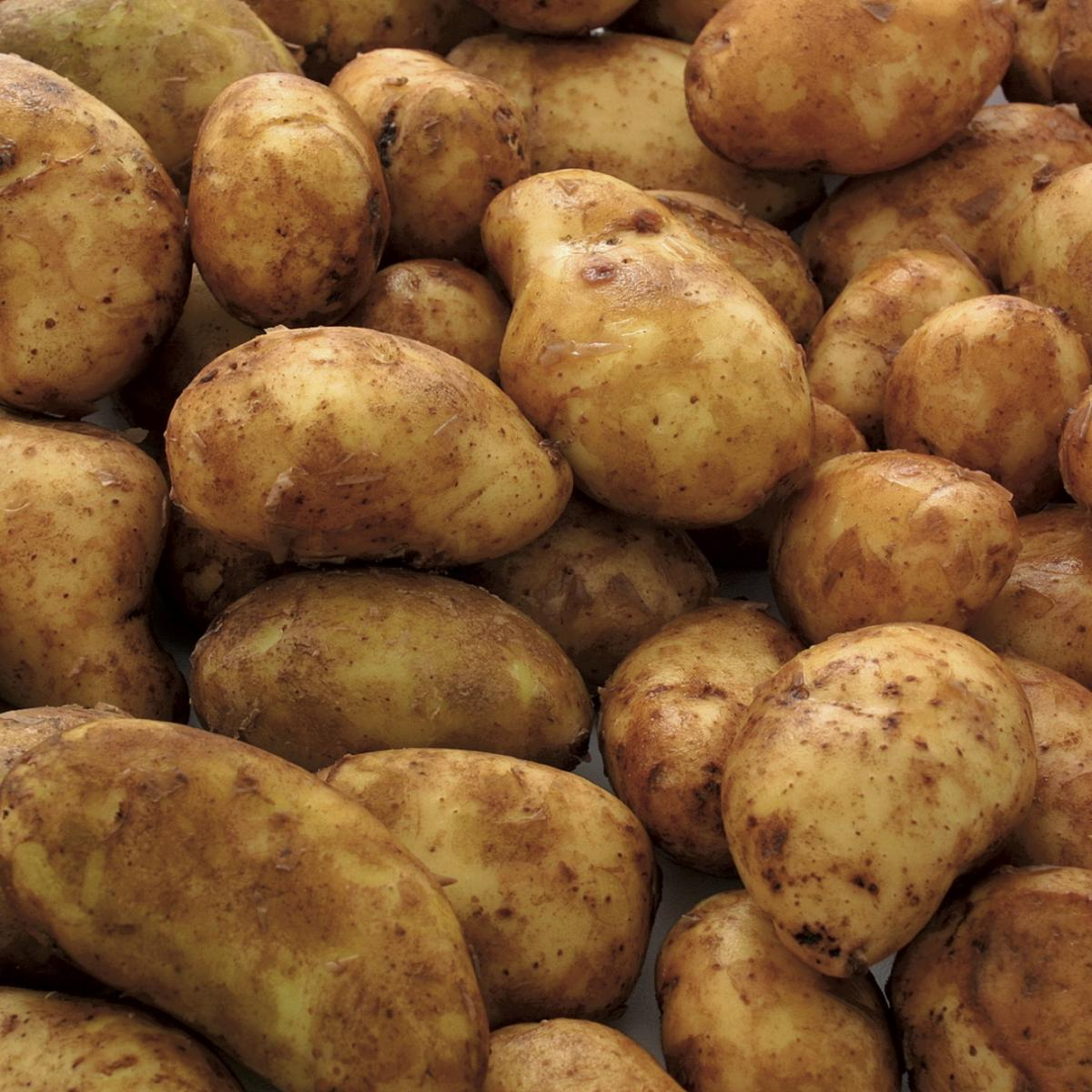 A picture of Delia's New Potatoes with Bacon and Onion recipe