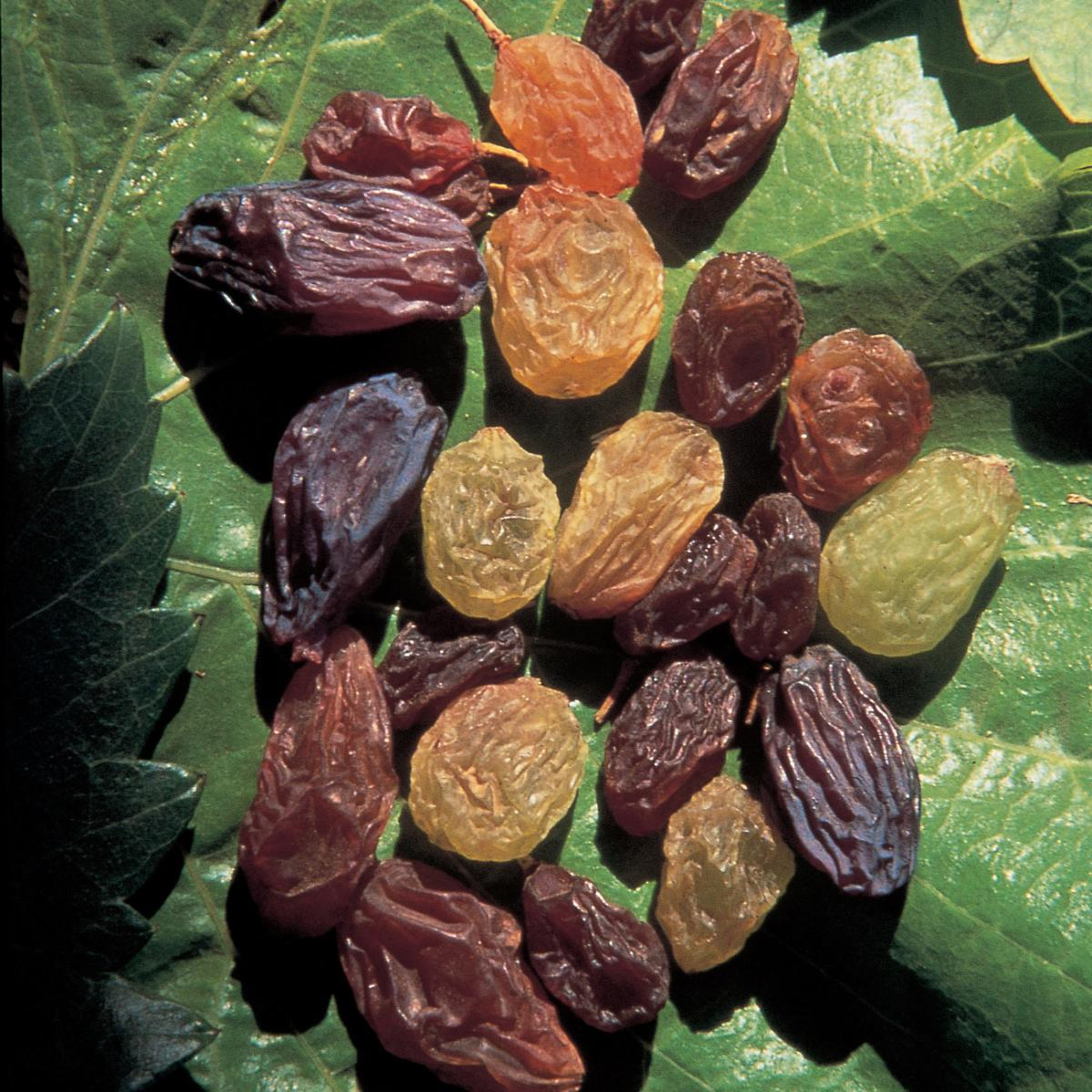Ingredient vegetarian raisins
