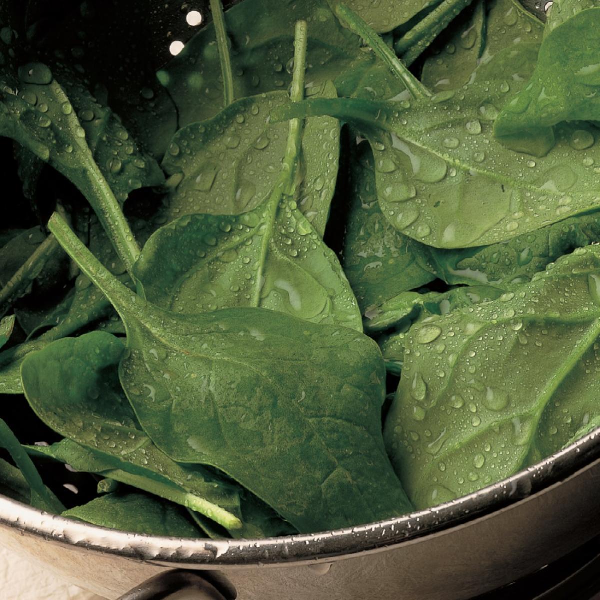 Ingredient vegetarian spinach