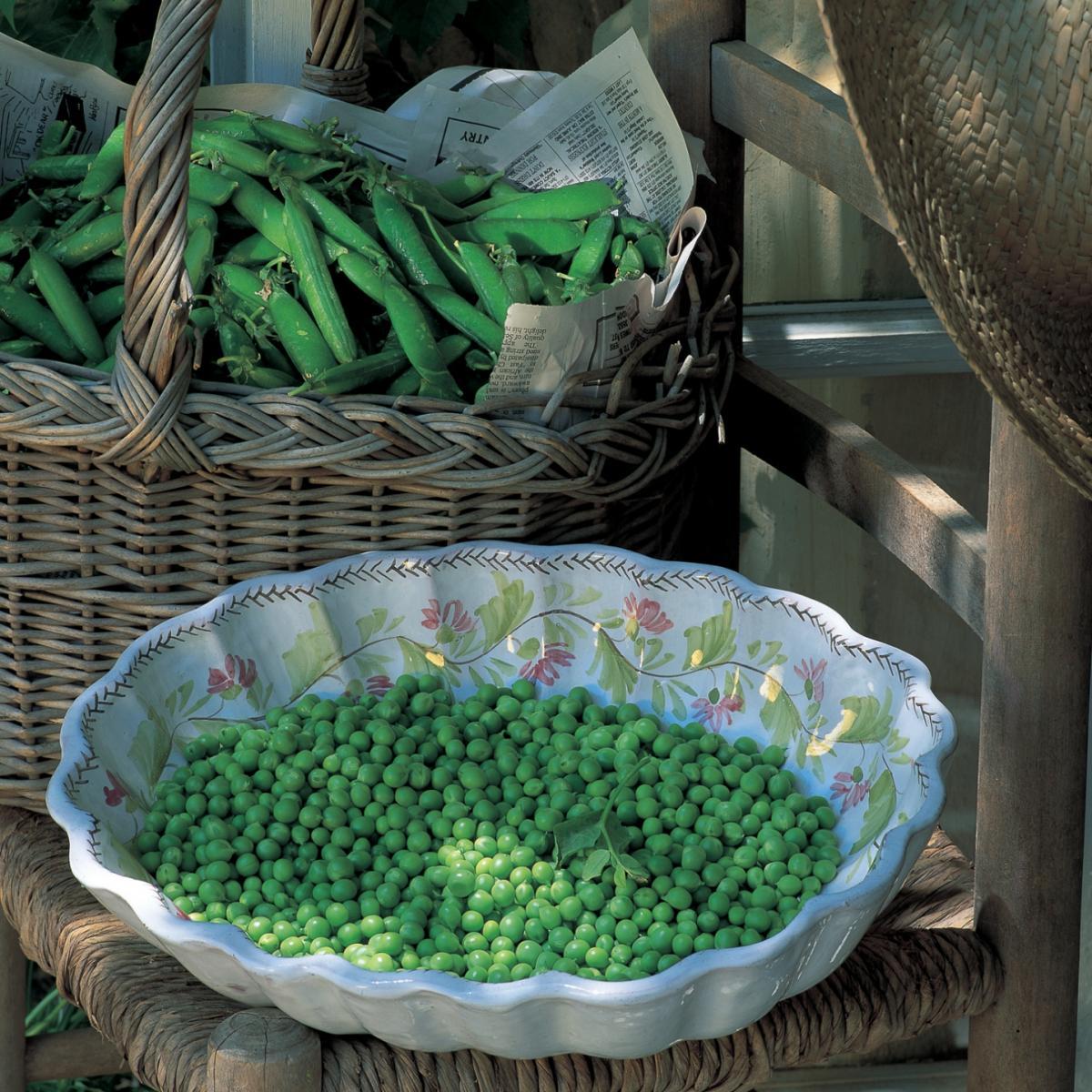 A picture of Delia's Fresh Shelled Pea Soup recipe