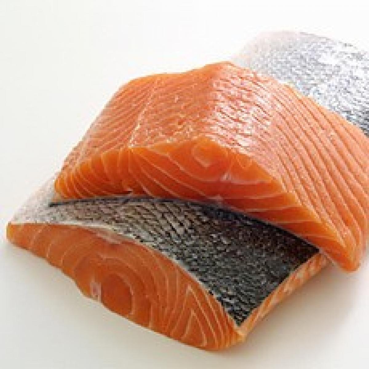 Salmon 19578