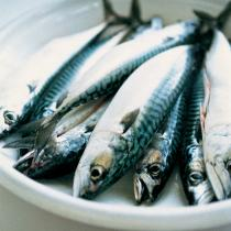 A picture of Delia's Grilled Cornish Mackerel with Salsa Verde recipe